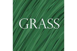 Vector grass background.