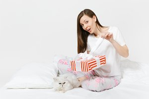 Calm young woman sitting in bed with white cute Persian silver chinchilla cat isolated on white background. Beauty female with red striped gift box in room. Rest, relax, good mood concept. Copy space.