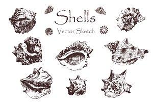 Set shells.