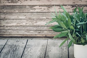 Salvia officinalis. Sage leaves on old wooden table. Garden sage. Rustic enameled mug. Retro magazine picture. Copy space