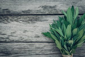 Salvia officinalis. Sage leaves on old wooden table. Garden sage. Retro magazine picture. Copy space