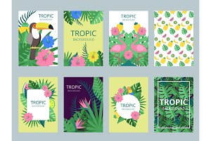 Design template of cards with illustrations of exotic plants, fruits and animals
