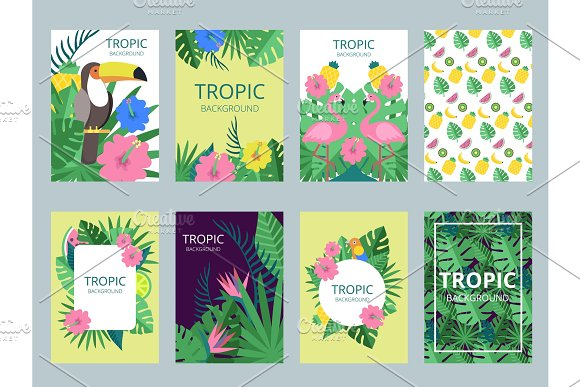 Design Template Of Cards With Illustrations Of Exotic Plants Fruits And Animals