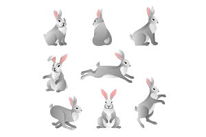 Cute grey rabbits set