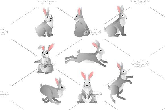 Cute Grey Rabbits Set