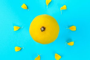 Yellow whole lemon in the form of the sun and rays from the petals of a yellow flower on a pastel blue background.