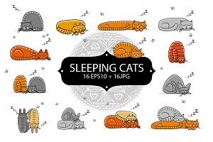 Cute sleeping cats