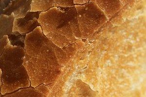 Baguette Crust of Bread