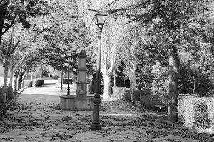 Fountain Village in Black and White