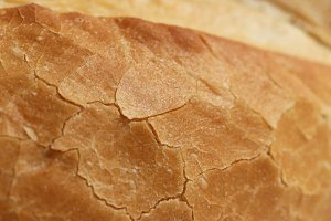Crust of Bread