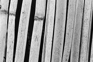 Cane Background in Black and White