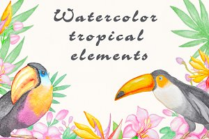 Watercolor tropical florals