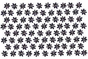 Sunflower Seeds Flowers Pattern