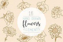 16 hand drawn flowers illustration