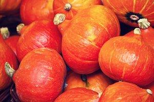 Orange pumpkins in a market