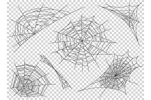 Web spider cobweb icons set. Outline illustration of web spider cobweb vector icons for web