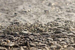 Wet stony pebble beach close-up