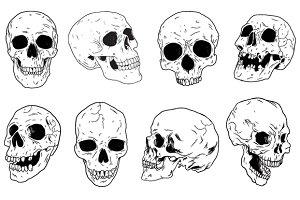 Skulls - Hand Drawn