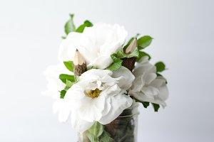 Gardenias 1