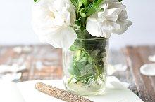 Gardenias 2