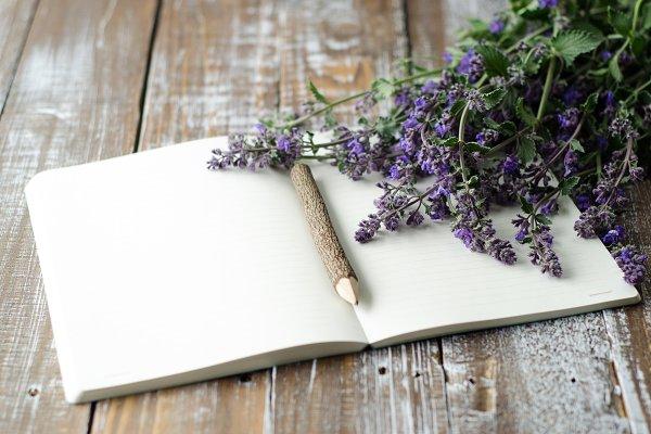 Organic Writing 4