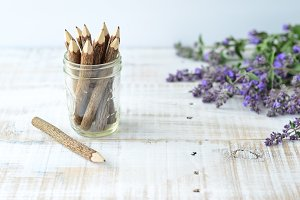 Lavender Wood 2