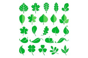 Growing plants. Leaf and grass shoots. Vector illustration in flat style