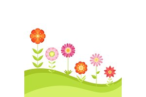 Summer floral vector background with garden flowers. Illustration in flat style