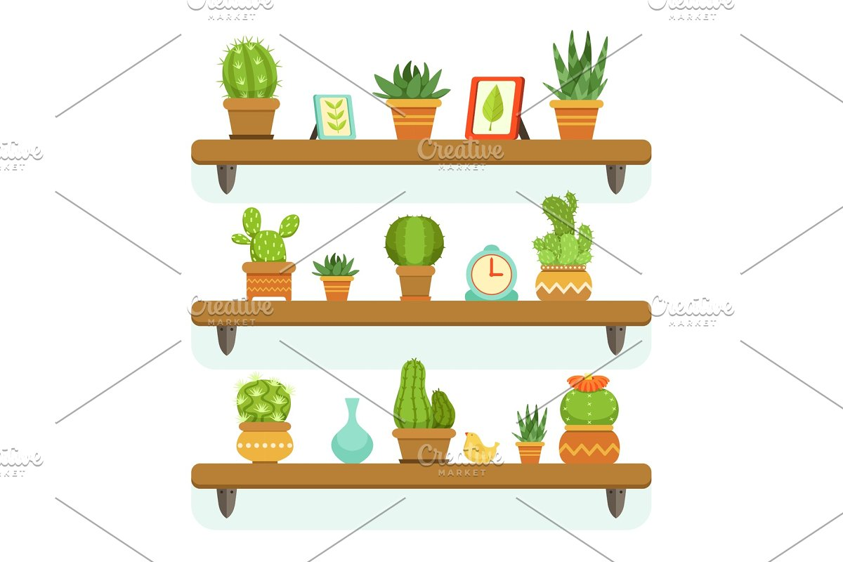Cactuses In Pots Stand On The Shelves Decorative Plants Set