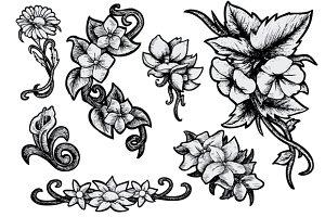 Flowers - Hand Drawn
