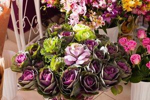 Decorative cale flowers