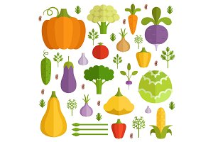 Different vegetables in cartoon style. Vector icons set
