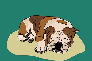 Sleeping dog funky Illustration