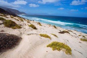 Stunning desolate landscape of sand dunes and desert plants of atlantic coastline with ocean waves. Baia Das Gatas, North of Calhau, Sao Vicente Island Cape Verde