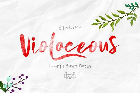 Violaceous - Brush Script