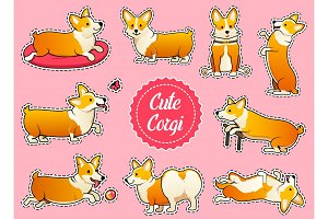 Set of cute dogs breed Welsh Corgi Pembroke on pink background. stickers for girls. A domestic pet, a happy royal animal for girls. Funny Red haired puppy looks like a fox. Vector illustration.