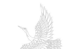 Red-crowned crane illustration