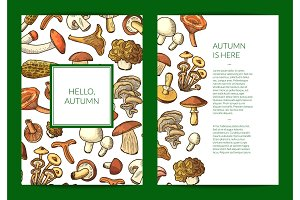 Vector hand drawn mushrooms card, flyer or brochure template illustration