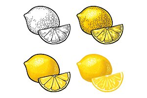 Lemon Slice and whole. Vector color vintage engraving and flat