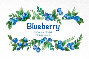 Blueberry Watercolor Clip-Art