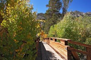 A  charming wooden bridge