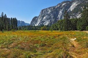The famous Yosemite Park