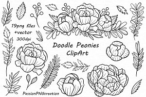 Hand drawn Doodle Peonies Clipart