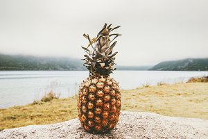 Pineapple fruit and foggy landscape