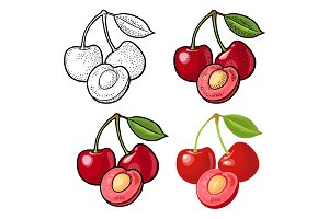 Whole and half cherry berry with leaf. Vector engraving and flat