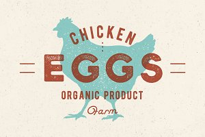 Chicken Eggs. Vintage hand drawn logo