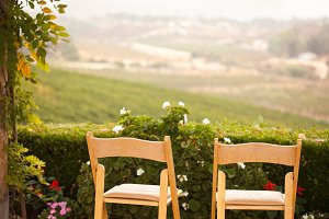 Patio Chairs Overlooking Vineyard