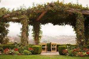 Beautiful Vine Covered Patio Scene