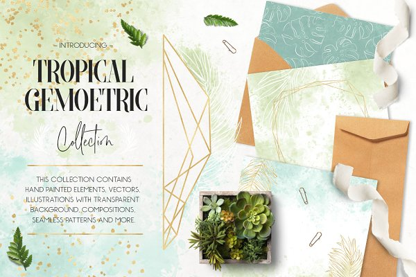 Illustrations and Illustration Products: Patrycja Dolata - Tropical & Geometric Collection