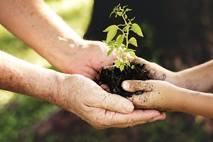 Family plant a new tree for future